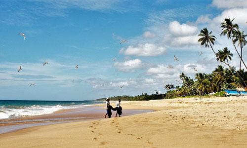 Livet som single 4 perfekte feriedestinationer for singler Negombo - Livet som single - 4 perfekte feriedestinationer for singler