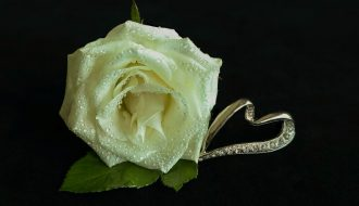 white rose 3209250 1280 330x190 - Et smykke for livet